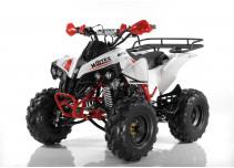 MOTAX ATV Raptor Super LUX 125 сс