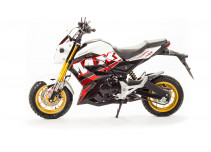 Motoland MX 125