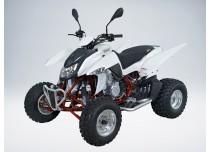 QuadRaider 450